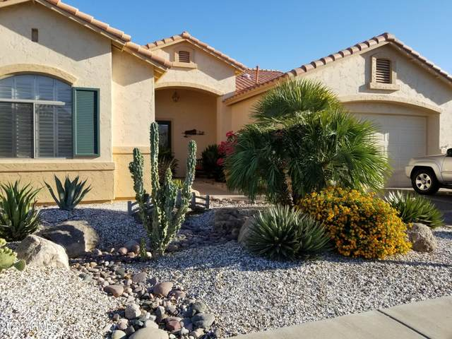 17847 W Addie Lane, Surprise, AZ 85374 (MLS #6212772) :: Devor Real Estate Associates
