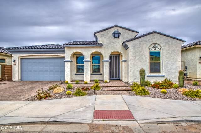 3032 E Robin Lane, Phoenix, AZ 85050 (MLS #6212881) :: Yost Realty Group at RE/MAX Casa Grande