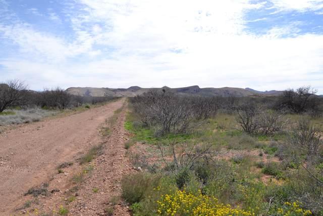 Tbd 36.7 Four Winds, Douglas, AZ 85607 (MLS #6212940) :: The Copa Team | The Maricopa Real Estate Company