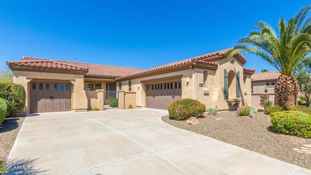 28110 N 123RD Lane, Peoria, AZ 85383 (MLS #6212982) :: The Laughton Team