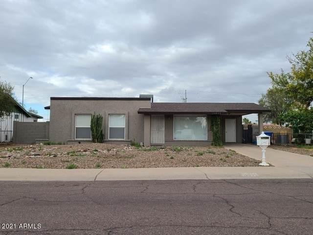 19838 N 18TH Lane, Phoenix, AZ 85027 (MLS #6213043) :: Yost Realty Group at RE/MAX Casa Grande