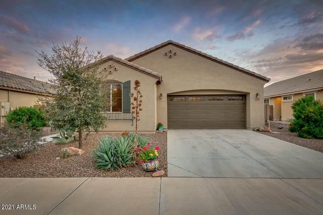 21029 E Pecan Lane, Queen Creek, AZ 85142 (MLS #6213227) :: Yost Realty Group at RE/MAX Casa Grande