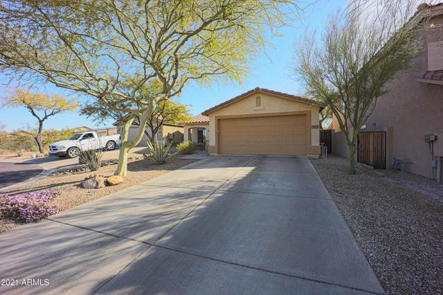 33619 N 46TH Place, Cave Creek, AZ 85331 (MLS #6213234) :: The Laughton Team