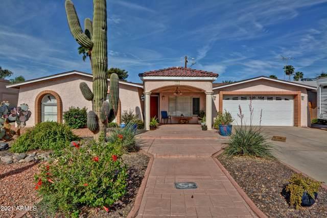 14444 N 18th Drive, Phoenix, AZ 85023 (MLS #6213235) :: Yost Realty Group at RE/MAX Casa Grande