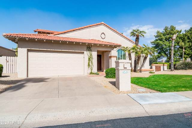 4310 E Cortez Street, Phoenix, AZ 85028 (MLS #6213249) :: Yost Realty Group at RE/MAX Casa Grande