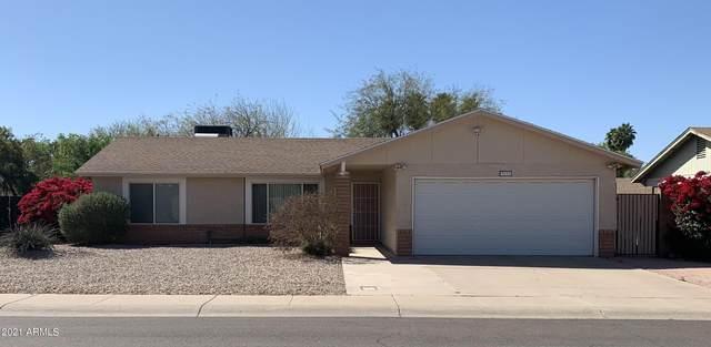 3631 W Carla Vista Drive, Chandler, AZ 85226 (MLS #6213289) :: Yost Realty Group at RE/MAX Casa Grande