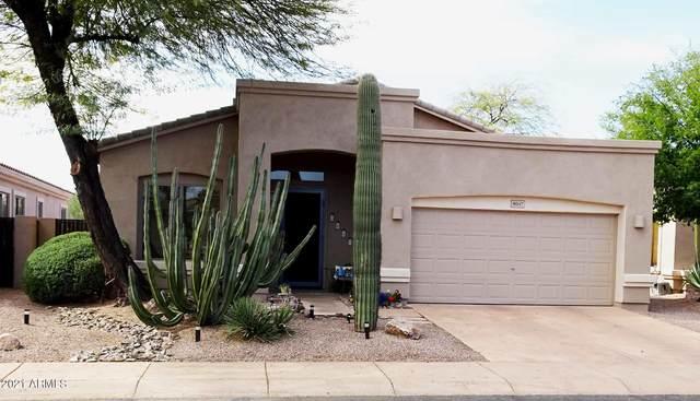 5047 E Robin Lane, Phoenix, AZ 85054 (MLS #6213302) :: Yost Realty Group at RE/MAX Casa Grande