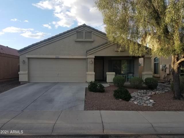 12414 W Denton Avenue, Litchfield Park, AZ 85340 (MLS #6213319) :: Yost Realty Group at RE/MAX Casa Grande