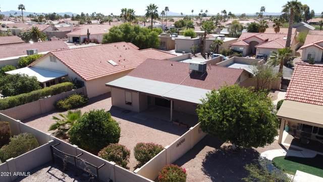 10514 E Elmhurst Drive, Sun Lakes, AZ 85248 (MLS #6213330) :: Yost Realty Group at RE/MAX Casa Grande