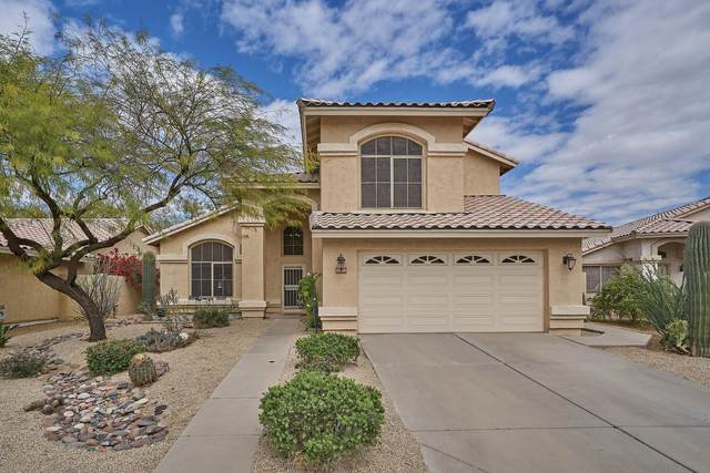 1080 W Goldfinch Way, Chandler, AZ 85286 (MLS #6213353) :: Yost Realty Group at RE/MAX Casa Grande