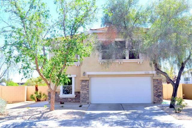 6129 N 134th Drive, Litchfield Park, AZ 85340 (MLS #6213432) :: Yost Realty Group at RE/MAX Casa Grande