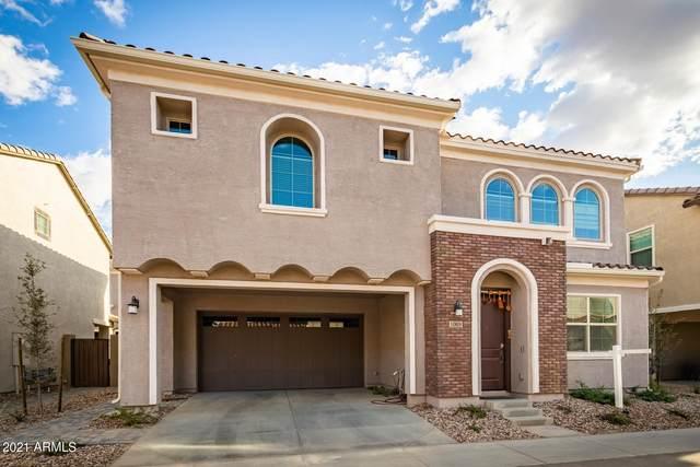 1069 E Sabino Drive, Chandler, AZ 85286 (MLS #6213481) :: Yost Realty Group at RE/MAX Casa Grande