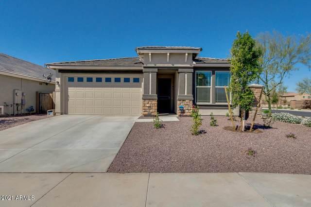 11250 N 186TH Lane, Surprise, AZ 85388 (MLS #6213503) :: Walters Realty Group