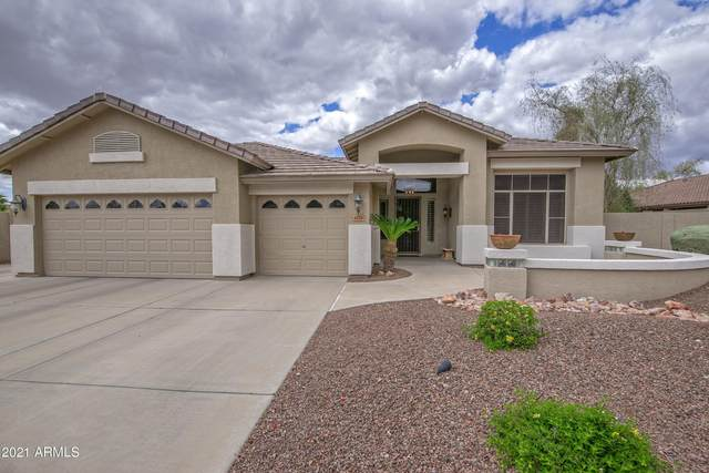 6724 W Angela Drive, Glendale, AZ 85308 (MLS #6213523) :: Yost Realty Group at RE/MAX Casa Grande