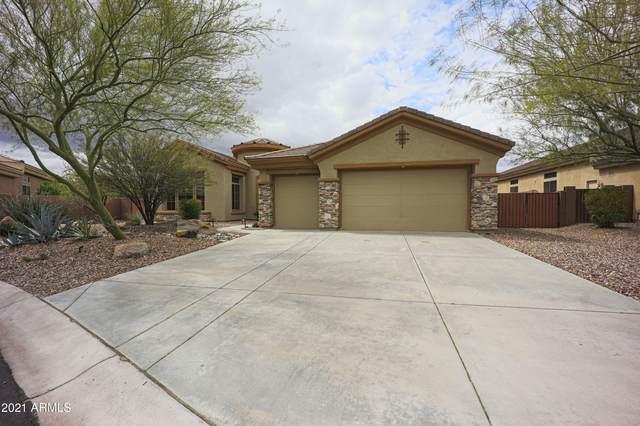 41904 N Alistair Way, Phoenix, AZ 85086 (MLS #6213558) :: Yost Realty Group at RE/MAX Casa Grande
