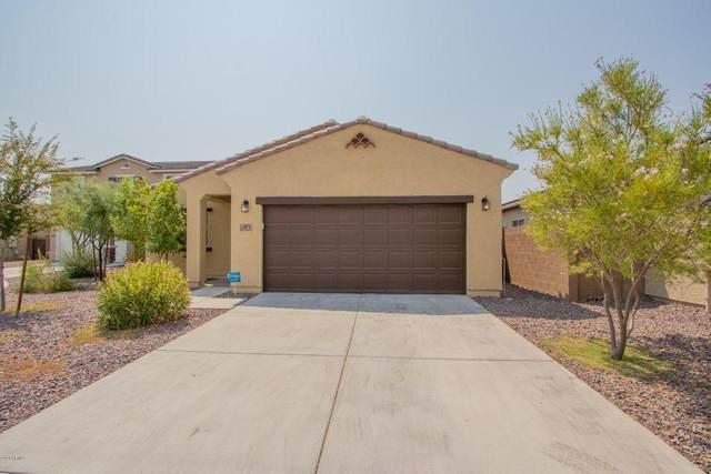 4071 W Winston Drive, Laveen, AZ 85339 (MLS #6213587) :: Yost Realty Group at RE/MAX Casa Grande