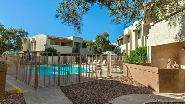 4150 E Cactus Road #206, Phoenix, AZ 85032 (MLS #6213651) :: The Everest Team at eXp Realty