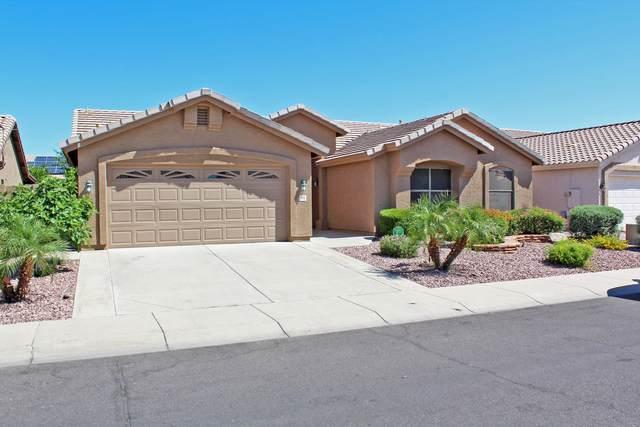 528 W Michelle Drive, Phoenix, AZ 85023 (MLS #6213653) :: Yost Realty Group at RE/MAX Casa Grande