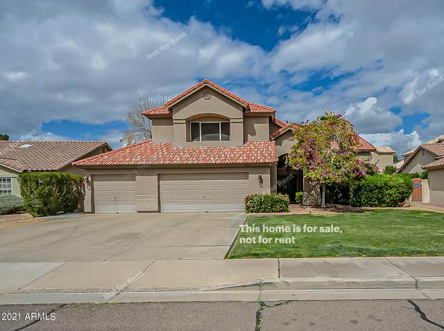 8600 S Maple Avenue, Tempe, AZ 85284 (MLS #6213686) :: Yost Realty Group at RE/MAX Casa Grande