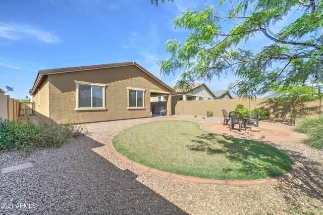 8735 W Heatherbrae Drive, Phoenix, AZ 85037 (MLS #6213742) :: Yost Realty Group at RE/MAX Casa Grande