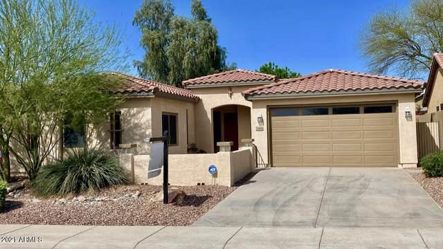 3466 W King Drive, Anthem, AZ 85086 (MLS #6213761) :: The Daniel Montez Real Estate Group