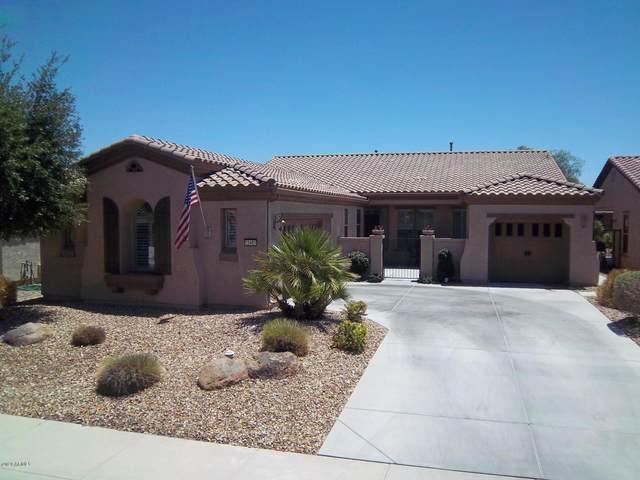 12401 W Pinnacle Vista Drive, Peoria, AZ 85383 (MLS #6213836) :: Long Realty West Valley