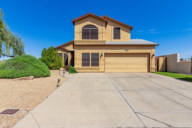 250 W Grovers Avenue, Phoenix, AZ 85023 (MLS #6213970) :: Yost Realty Group at RE/MAX Casa Grande