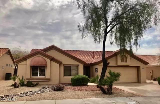 15313 W Blue Verde Drive, Sun City West, AZ 85375 (MLS #6213995) :: The Luna Team