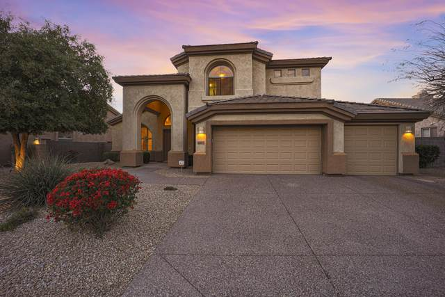 6510 E Evans Drive, Scottsdale, AZ 85254 (MLS #6214014) :: Yost Realty Group at RE/MAX Casa Grande
