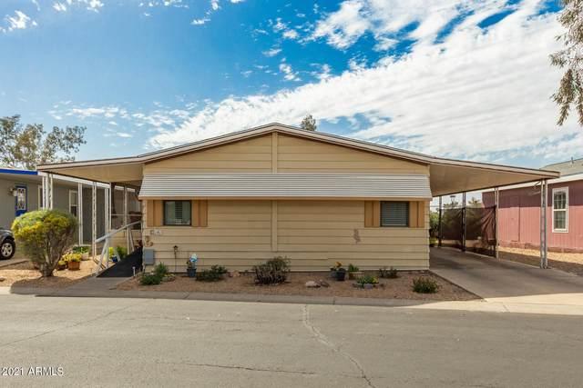6960 W Peoria Avenue #141, Peoria, AZ 85345 (MLS #6214020) :: My Home Group