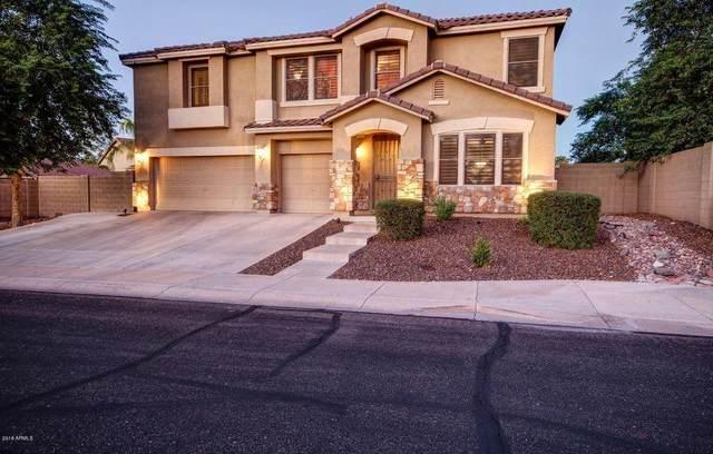 8813 S 13TH Place, Phoenix, AZ 85042 (MLS #6214021) :: Yost Realty Group at RE/MAX Casa Grande