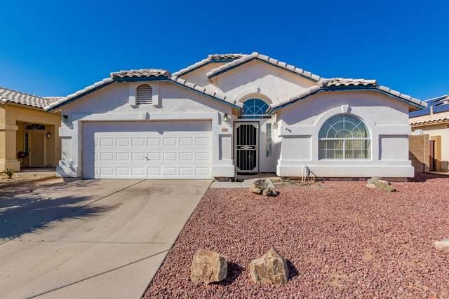 696 E Megan Street, Chandler, AZ 85225 (MLS #6214043) :: Conway Real Estate
