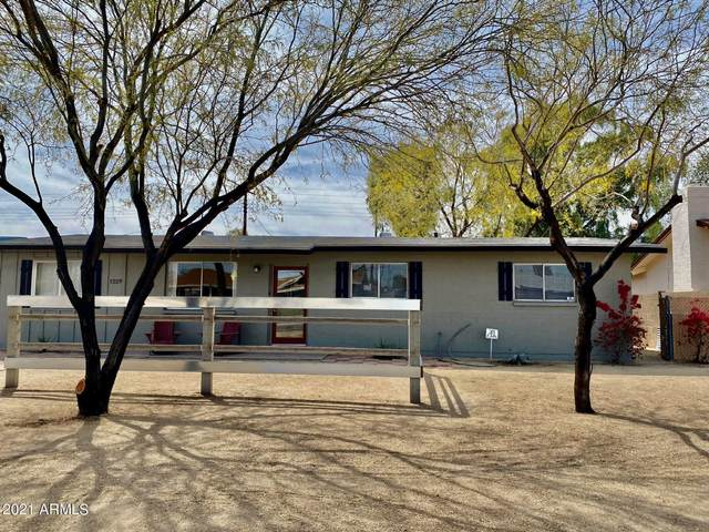 1229 W 15TH Street, Tempe, AZ 85281 (MLS #6214083) :: Yost Realty Group at RE/MAX Casa Grande