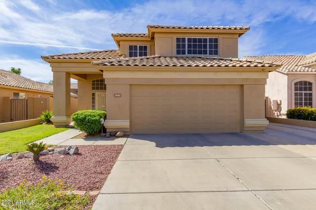 7443 W Crest Lane, Glendale, AZ 85310 (MLS #6214087) :: Yost Realty Group at RE/MAX Casa Grande