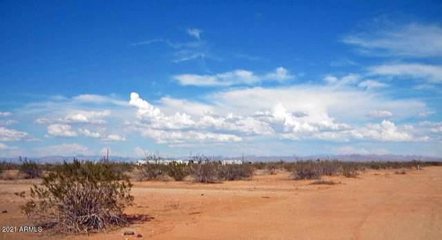 0 E Pot O Gold Trail, Florence, AZ 85132 (MLS #6214143) :: Yost Realty Group at RE/MAX Casa Grande