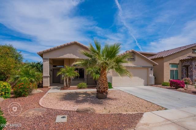 3609 S 256TH Avenue, Buckeye, AZ 85326 (MLS #6214180) :: Devor Real Estate Associates
