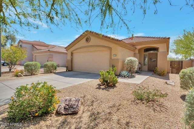 5037 E Lucia Drive, Cave Creek, AZ 85331 (MLS #6214181) :: Executive Realty Advisors