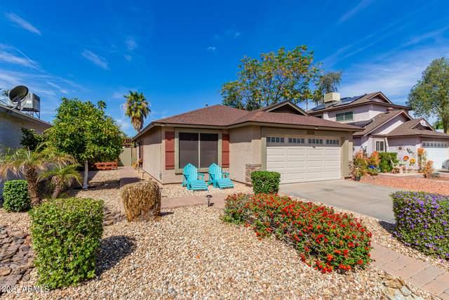 11818 N 76TH Lane, Peoria, AZ 85345 (MLS #6214185) :: Yost Realty Group at RE/MAX Casa Grande