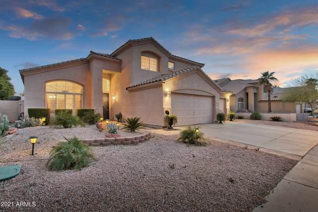 1617 W South Fork Drive, Phoenix, AZ 85045 (MLS #6214191) :: Yost Realty Group at RE/MAX Casa Grande