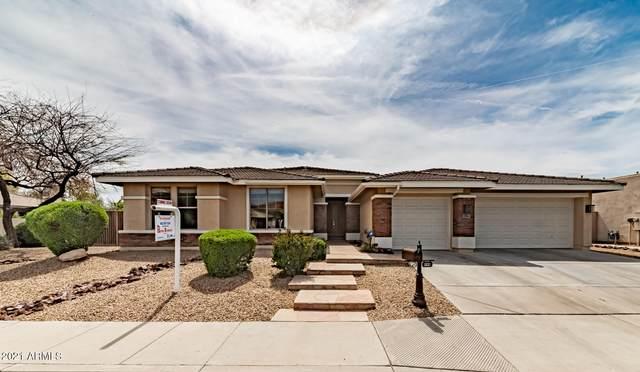 599 E Vinedo Lane, Tempe, AZ 85284 (MLS #6214278) :: Yost Realty Group at RE/MAX Casa Grande
