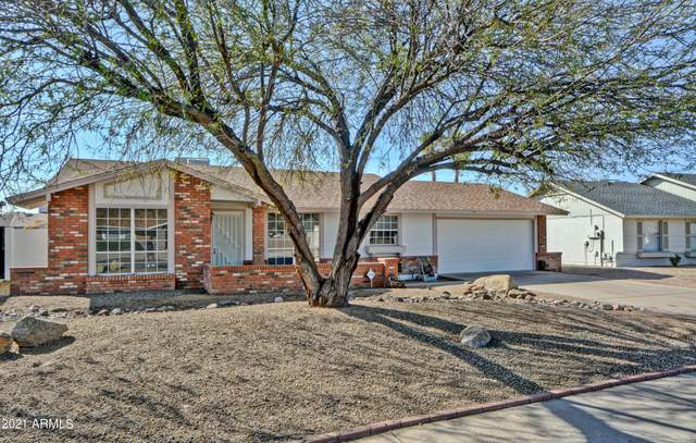 1705 W Mohawk Lane, Phoenix, AZ 85027 (MLS #6214281) :: Yost Realty Group at RE/MAX Casa Grande