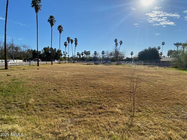 5950 N Central Avenue, Phoenix, AZ 85012 (MLS #6214415) :: neXGen Real Estate