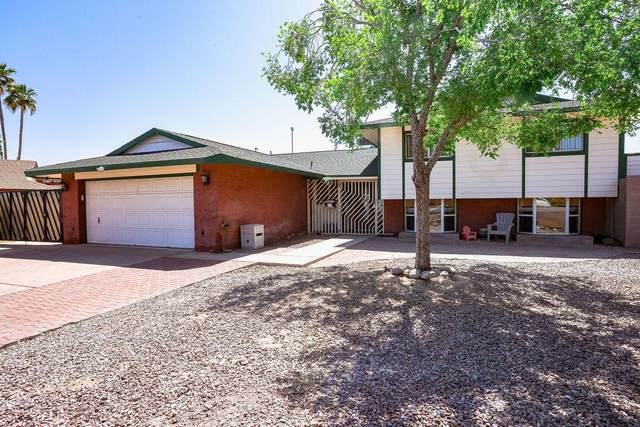 3930 S Elm Street, Tempe, AZ 85282 (MLS #6214450) :: The Property Partners at eXp Realty