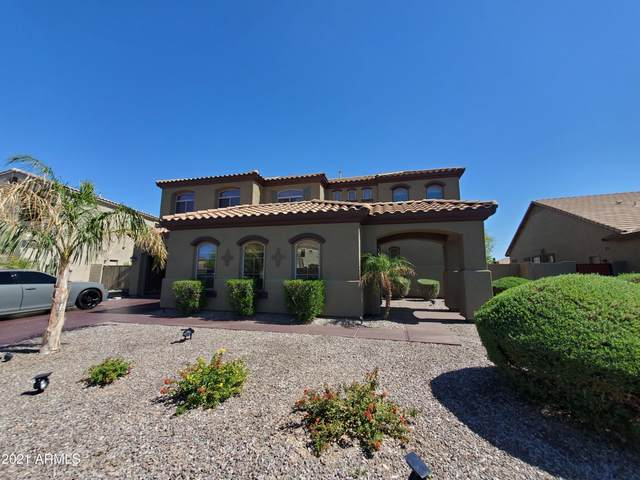 3577 S Halsted Court, Chandler, AZ 85286 (MLS #6214484) :: Yost Realty Group at RE/MAX Casa Grande