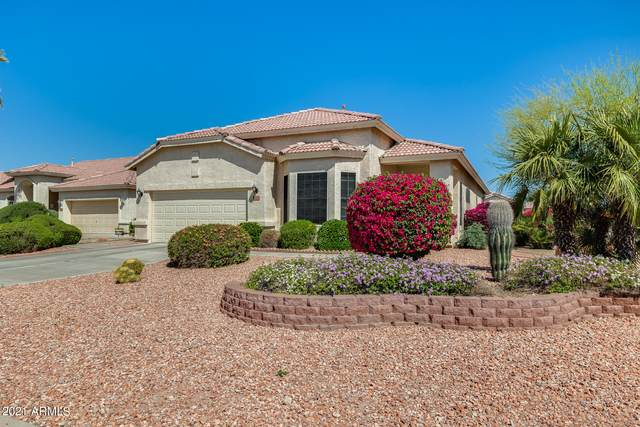 11660 W Cardinal Court, Surprise, AZ 85378 (MLS #6214556) :: Devor Real Estate Associates
