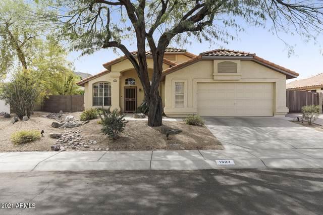 1327 E Sandra Terrace, Phoenix, AZ 85022 (MLS #6214608) :: Yost Realty Group at RE/MAX Casa Grande