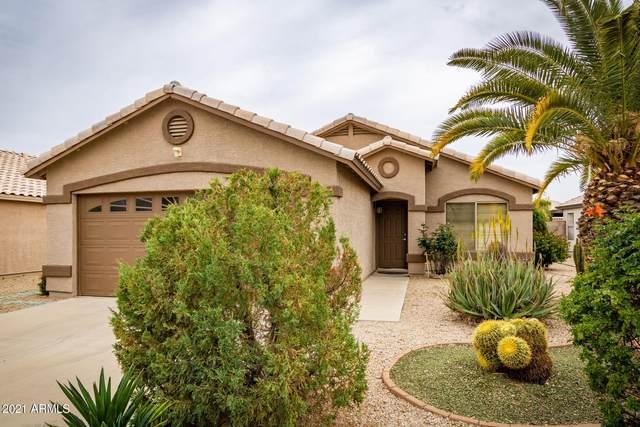 15947 W Lundberg Street, Surprise, AZ 85374 (MLS #6214627) :: Yost Realty Group at RE/MAX Casa Grande