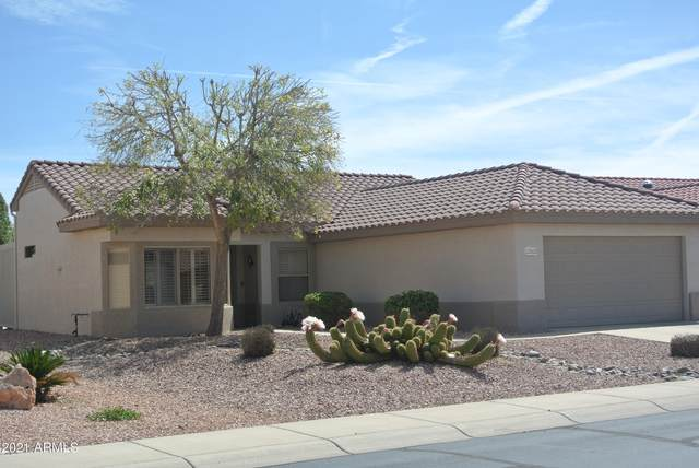 15960 W Indigo Lane, Surprise, AZ 85374 (MLS #6214654) :: Yost Realty Group at RE/MAX Casa Grande