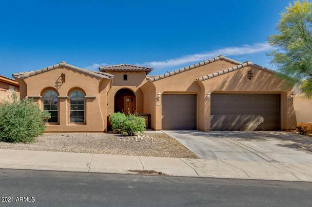 18175 W Narramore Road, Goodyear, AZ 85338 (MLS #6214668) :: Long Realty West Valley