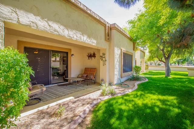 19006 N 91ST Lane, Peoria, AZ 85382 (MLS #6214679) :: My Home Group